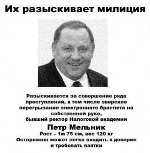 Melnik-Petro4-491x500